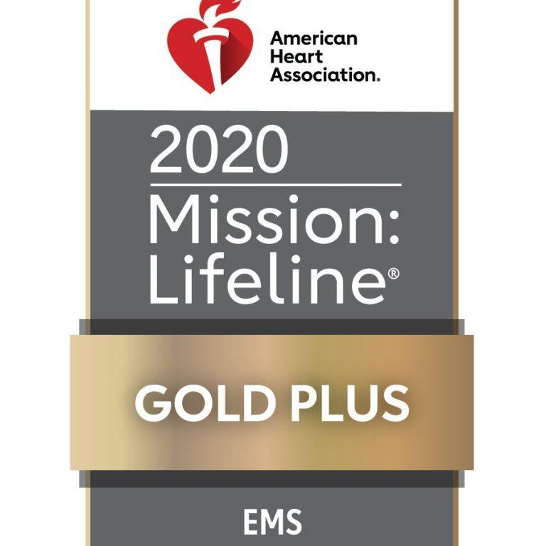 ML EMS PLUS_2020_Gold_4C
