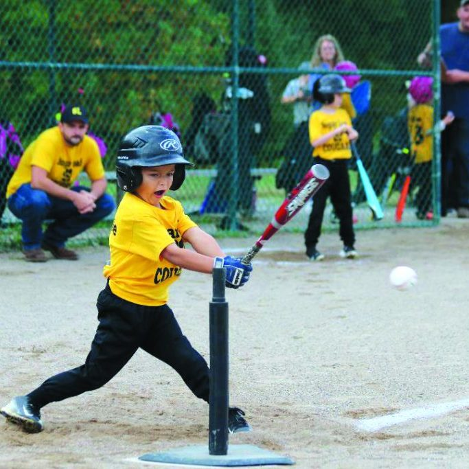 COULSON FOX, a member of the Sugar Loaf Cougars, connects with the ball in this action photo from the Alexander County Parks and Recreation 5-6 year old T-Ball league. (Team Hajer photo.)