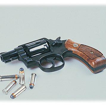 gun revolver web