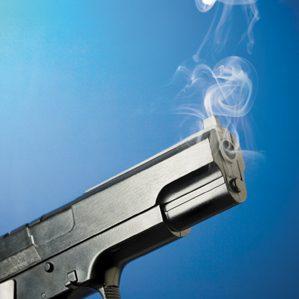 gun web