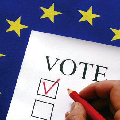 vote N1411P36011C